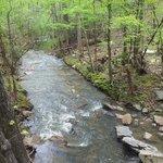 Chewacla Creek