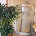 Serenity Suite Shower