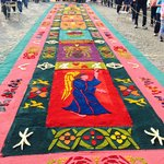 Carpets around the streets of the park (Semana Santa)