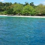 Isla Reta coastline...