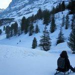 sledding down from Kleine Scheidegg