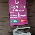 Eiger Run