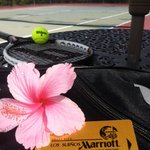 Tennis courts in excellent condition