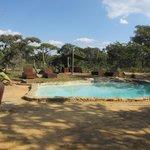 zwembad vlakbij huisje