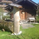 Outdoor Sauna and Dunk Trough!