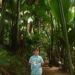Vallée de Mai et ses cocos de mer