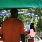 Black River Safari......