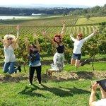 Audrey Wilkinson winery