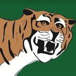 Babur Logo