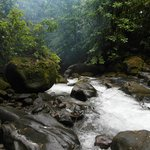 Sari-Sari Fluss