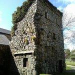 Pidgeon Tower