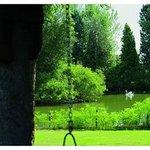 Visuale lago estate
