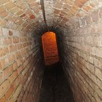 Little Tunnels in Fort Pickens!