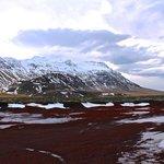 Lava field in Snæfellsnes Penninsula