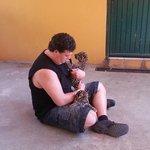 2 baby jaguars