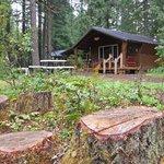 Koosah cabin
