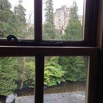 View from Bedroom 2 Window