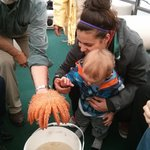 Touching sea stars! How cool is that!