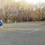 La pista de tenis