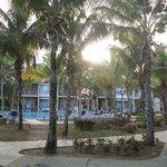 Vue piscine et bungalow