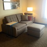 Newly Renovated!! Studio Suite front room with pull-out sofa.