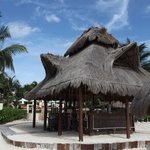 The Bar with swings on the beach