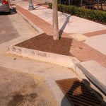 Protruding curb along Laskin Rd near Atlantic and Pacific