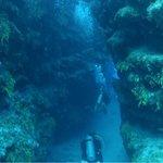 trinity caves