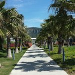 One of the many pathways in the grounds.