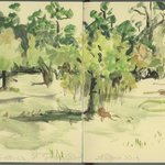 Fort Frederica grounds--a watercolor sketch