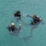 Diving Schools on Koh Mak