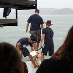The new crew being forced to jump into the sea!