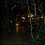 De noche caminando