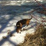 Oscar tests spring ice melt