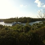 View of the Intracostal from the Tower