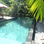 cool pool at Matahari Cottages
