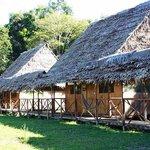 Foto de los bungalows de Amazon Camp