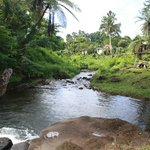 The on-site swimming hole and waterfall