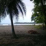the beach is only about 100 meters from casitas.