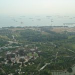 View from the skypark 4