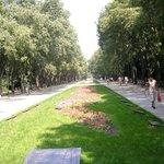Varna Sea Gardens