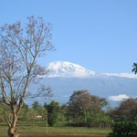 Kilimanjaro from view point at mawenzi wing