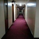 Hotel Dynasty - corridor