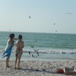 playa de celestum