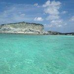 White cliffs (Iguanas)