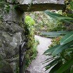 Hidden places in the garden