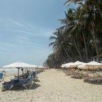 Las playas del hotel, con servicio de reposera, sombrilla y barra de tragos y bebidas