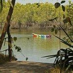 Ornamental Canoe
