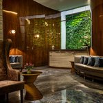 Lobby, Front Desk and Green Wall