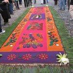 Flower Carpet Semana Santa